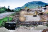 La truite mouchetée peu affectée par les travaux sur l'axe routier 73/175
