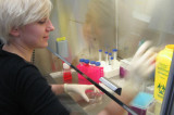 Le déshabillage viral, nouvelle cible thérapeutique contre le VIH