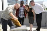 Une première colonie d'abeilles intégrée au campus de l'UQTR