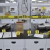Immersion dans le travail des spécialistes en scènes de crime