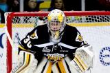 Hockey: De nouveaux visages chez les Patriotes!
