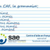 Avec le CAF, tu peux améliorer ton français écrit ou te préparer au TECFÉE!  #TECFEE #GRAMMAIRE