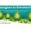 Concours Imagine ta foresterie